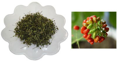 Ginseng Flower Tea 500g